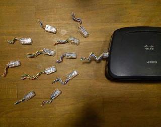 network sperm