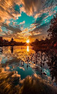 lake trees sunset