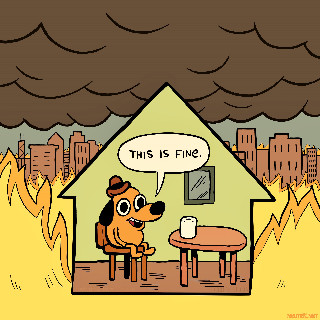 this is fine 2020