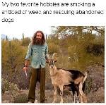 favorite hobbies