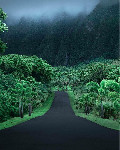 hawaii green road