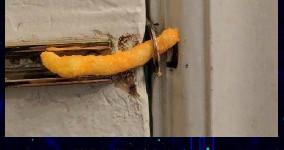 cheeto admin password