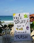 Jamaica one free spliff one trash