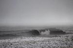 surf brown barrell